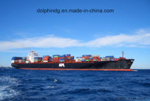 Shipping Forwarder: FCL Ocean Logistics From China to Laem Chabang