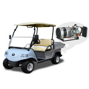 Hybrid Generator Golf Cart with Cargo Truck Del3022dh-H pictures & photos