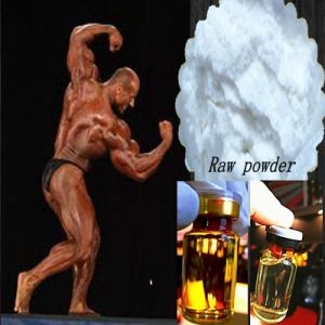 Raw Steroids Testosterone Undecanoate with No Side Effect pictures & photos