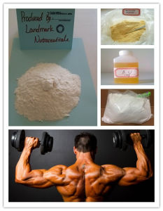 trenbolone beginner cycle