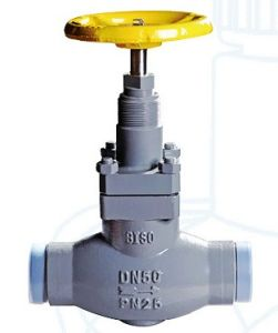 Cast Steel Globe Valve for Ammonia Cooling pictures & photos