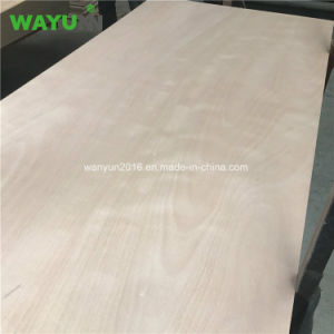 Poplar Plywood/Commerical Plywood pictures & photos