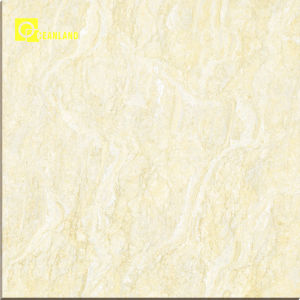 2016 New Design Shopping Mall Ceramic Floor Tile in China pictures & photos