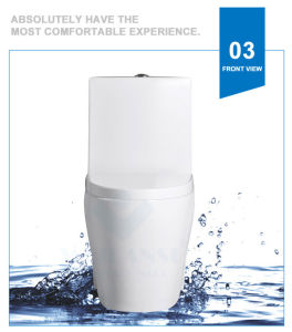 Weidansi Ceramic Wash Down S-Trap One Piece Toilet (WDS-T6109) pictures & photos