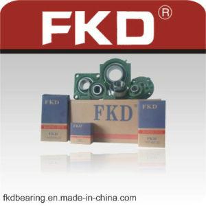 Fkd Pillow Block Bearing pictures & photos