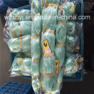 0.20mmx52mmsqx60mdx1kg Nylon Monofilament Fishing Net pictures & photos
