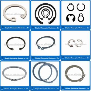 Internal and External Retaining Ring / Snap Ring (DIN471 / DIN472 / DIN6799) pictures & photos
