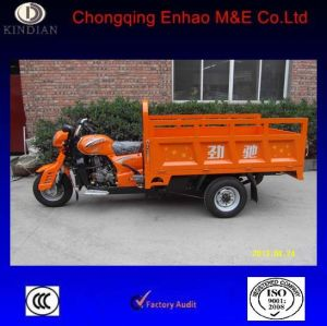Asia Tiger 200zh-2 Cargo Tricycle and Useful