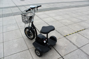 350W 500W Good Quality Motor Tricycle Electric Hot Model pictures & photos