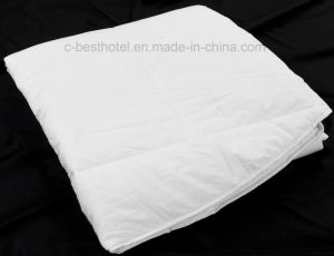 Wholesale Chinese Custom Down Quilt pictures & photos