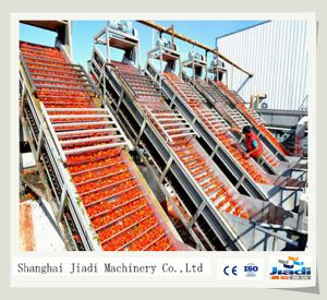 Vacuum Aseptic Filling Tomato Paste Production Line pictures & photos