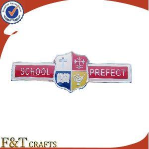 Wholesale School Souvenir Custom Soft Enamel Metal Nameplates Badge (FTNP10094J) pictures & photos