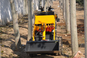 China Hzm Tacked Mini Skid Steer Loader with 800mm Width pictures & photos