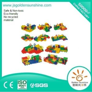 Children′s Toy Plastic Block with CE/ISO Certificate