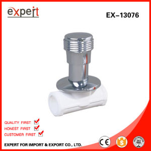 Heavy Stop Valve Concealed Stop Valve Female Threaded Stop Valve Ex-13076
