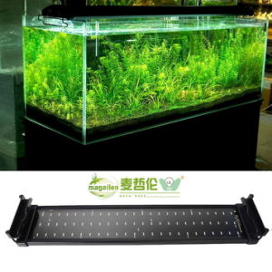 Fish Tank SMD LED Light 11W pictures & photos