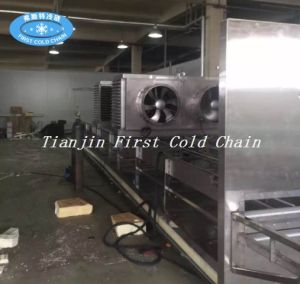Tunnel Quick Freezing Equipment for Meat Fish Poultry Seafood Dumpling Bread pictures & photos