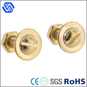 Brass Bolt Polished Flange Bots Slotted Round Head Bolt Nut pictures & photos