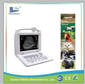 Digital Portable Ultrasound Machine for Sheep, Cattle, Swine and etc.