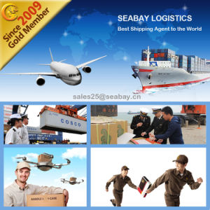 Air Freight/Ocean Freight/ Railway Freight From China to Russia pictures & photos