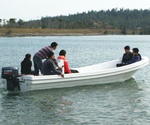 18′ Small Fiberglass Speed Boat for Sale pictures & photos