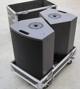 12xt Coaxial Stage Monitor, PRO Audio pictures & photos