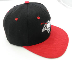 Red 6 Panel Embroidered Material for Snapback Cap pictures & photos