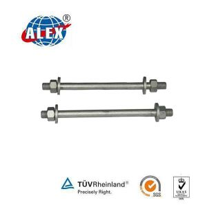 Zinc Plated Stud Bolt with Washer and Nuts