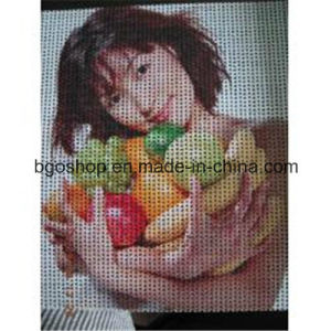 Printing Canvas Display Banner PVC Mesh Banner (1000X1000 9X9 270g) pictures & photos