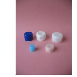 Plastic Flip-Top Caps for Bottles and Tubes pictures & photos