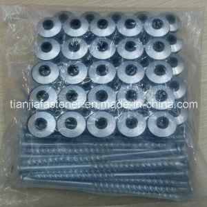 Ibr Nail /Asbestor Nail/Twisted Nail