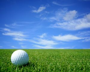 Synthetic Turf for Golf/Outdoor Venues