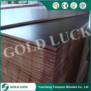 China Factory Good Quality Brown/Black Phenolic Film Faced Plywood pictures & photos