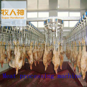 Slaughtering Line in Meat Processing in Poultry House pictures & photos