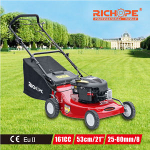 Professional Best Selling High Quality Petrol Lawn Mower pictures & photos