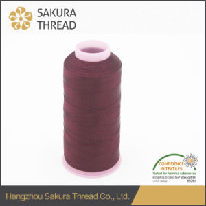 Oeko-Tex100 1 Class Customized Multicolored Rayon Thread for Knitting pictures & photos