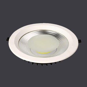 24W COB Dimmable LED Down Light Meanwell Driver with Ce RoHS pictures & photos