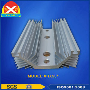 Anodized Aluminium Profile Heat Sink for Controllable Silicon pictures & photos