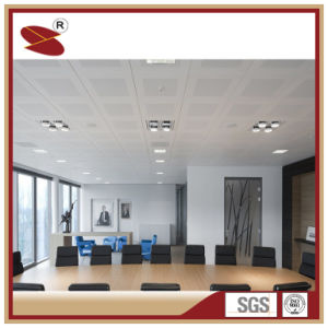 Hight Eco-Friendly Quality Decoration Materials for Ceiling Tiles pictures & photos