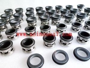 Elastomer Bellow Mechanical Seal as-E210 Replace Johncrane 2100 pictures & photos