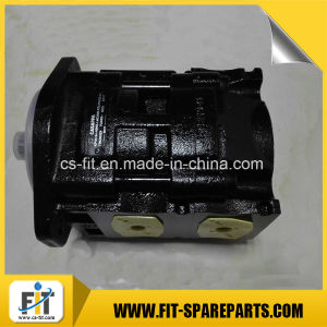 Double Hydraulic Gear Pump for Zoomlion/Sany pictures & photos