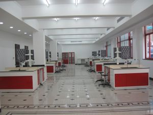 Steel Lab Furniture with High Cost Performance (JH-SL016) pictures & photos