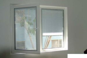 Good Reputation UPVC Casement Window Hinge PVC Swing Window (TS-1060) pictures & photos