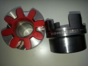 Rotex Coupling for Motor and Pump pictures & photos