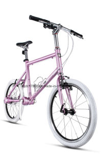 Tdjdc 24′′ Ladies Outdoor Chainless Small Road Bike pictures & photos