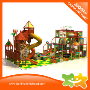 New Design Cute Indoor Naughty Castle Equipment for Kids pictures & photos