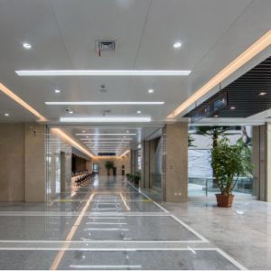 Hot Sales Fashionable Aluminum Custom Made Ceiling for Interior Decorative pictures & photos