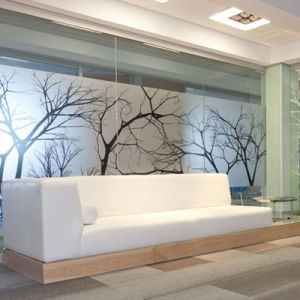 Custom Decorative Frost Window Film for Office Glass pictures & photos