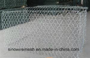 Sailin Hexagonal Cage Wire Mesh pictures & photos