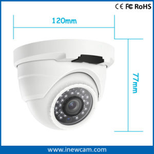 CCTV Camera Supplier 4MP Poe Network IP Camera with Mic pictures & photos